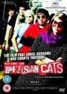 persiancats