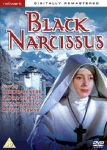 black_narcussis